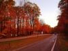 Roadway_Fall-U