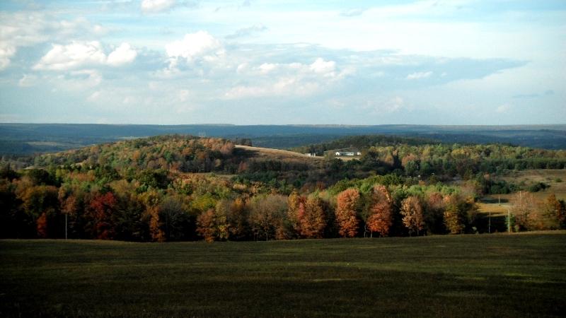 fall scene3