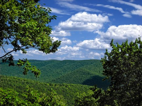 DCNR Bureau of Forestry Lists Statewide Accomplishments