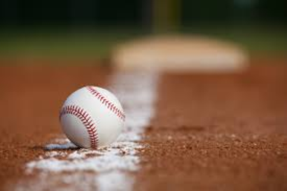 Lawrence Township Supervisors, Rec Park Board and Community Come Together to Discuss Batting Cages