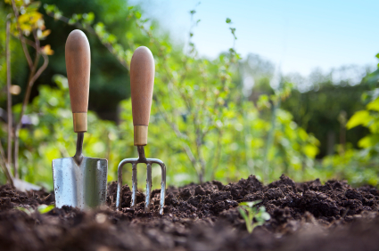 Lawn & Garden Feature:  Spring Planning Tips
