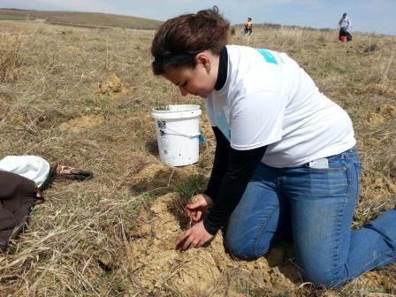Students, Faculty, Staff Help Flight 93 Memorial Take Root