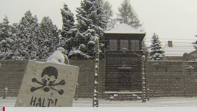 Video:  Survivors of Auschwitz return for anniversary