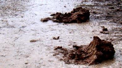 PennDOT Issues Spring Notice:  Keep Mud off Roadways
