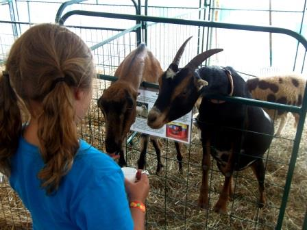 Clearfield County Fair Schedule of Events, Friday, Aug. 3