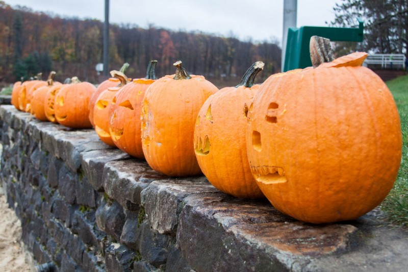 12th Annual Fall Festival and Pumpkin Float to be Held at Parker Dam