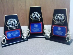 The team awards to be presented at the Ultimate Warrior Touney