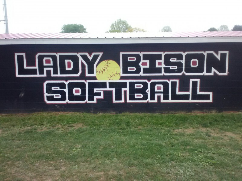Lady Bison Shut Out by Scarlet Dragons, 8-0