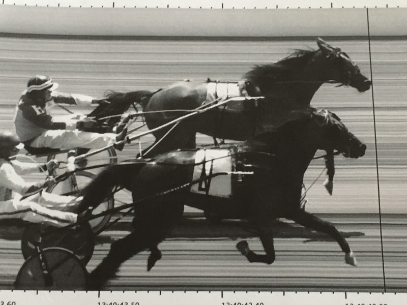 Fair Harness Racing Fans Treated to Photo Finish