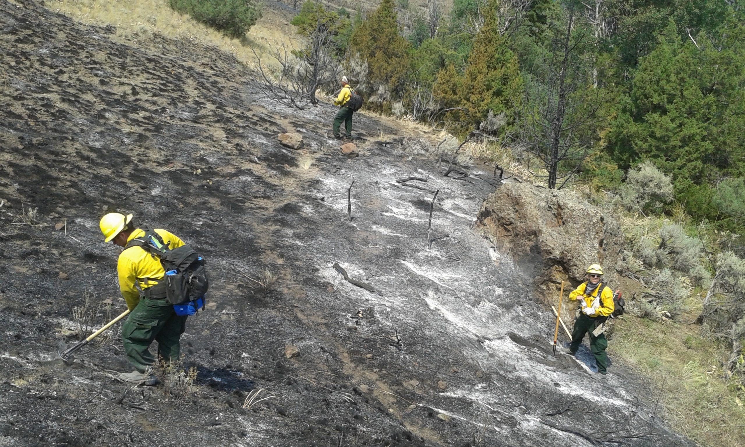 Wildland firefighters from all over Pennsylvania search for hot spots in a burned-over area of the Whit Fire near Cody, Wyo. Two crews from Pennsylvania were sent to assist with wildfires in Wyoming on July 28. The crews returned home on Aug. 14. (Photo by Kimberly Finnigan)