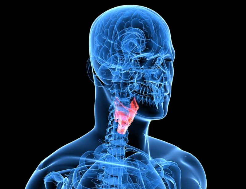 The Medical Minute: Incidence of Thyroid Cancer on the Rise