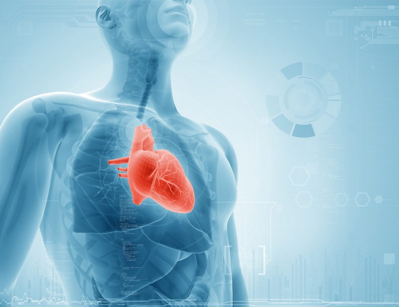 The Medical Minute: Treatment Options for Heart Failure