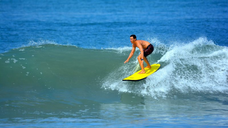Surfing, falconry and other summer vacation pursuits