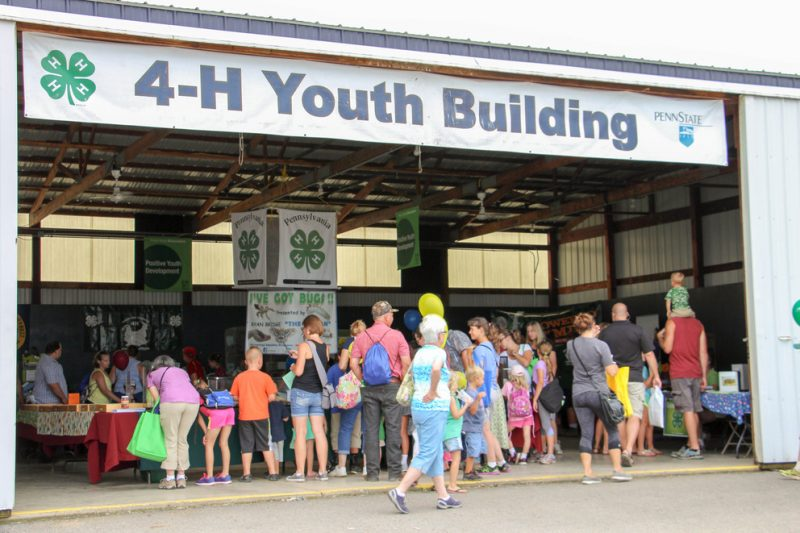 Learning is the Focus for Children's Activities at Ag Progress Days