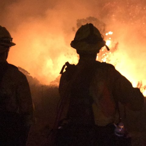 Wildfire near Yosemite forces thousands to flee homes