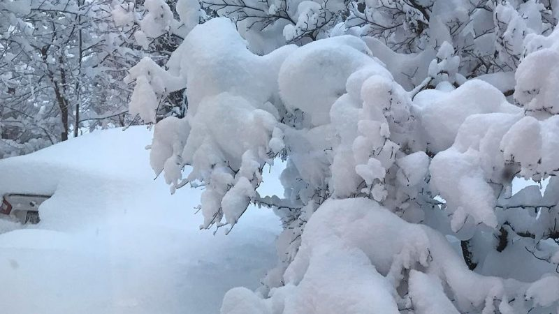 Even for a place that gets a ton of snow, this was a record-breaking two days for Erie