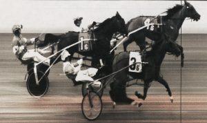 Schadel Driving Toward Fair Harness Racing Trophy | GantNews com
