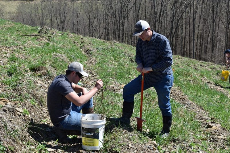Wildlife Technology Students Help to Reclaim PA Forests