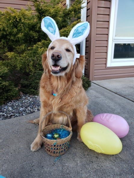 Easter Bone Hunt to Benefit Allegheny Spay & Neuter Clinic
