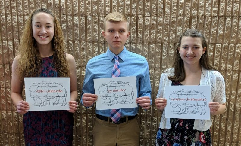 Clearfield Education Association Presents Scholarships
