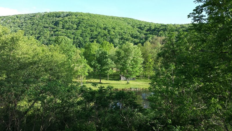 Wonders of the Wilds: Why Visit the Pennsylvania Wilds?