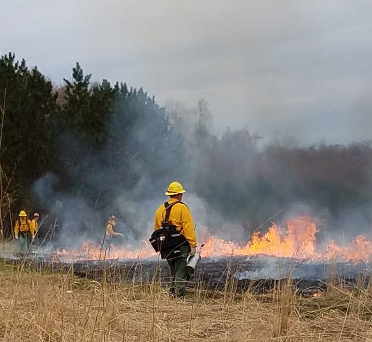 DCNR Discusses Complexities of Prescribed Fire