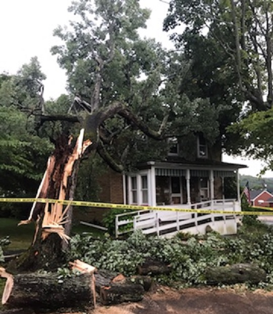 READER PHOTO: Clean Up Begins After Tree Falls on Clearfield Home During Severe Storm