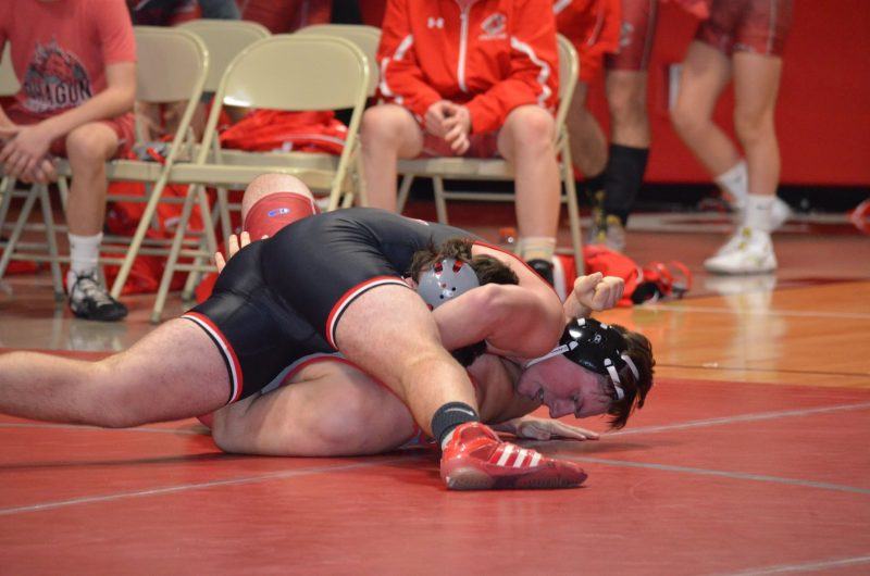 Bison Grapplers Easily Slay The Scarlet Dragons